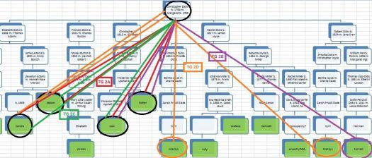 Dicks Chart TG2