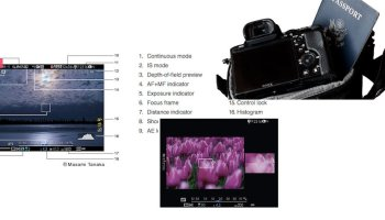 Disadvantages of Electronic Shutter Silent Shooting
