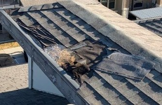 Damaged and missing shingles on a commercial roof, indicating it needs to be replaced