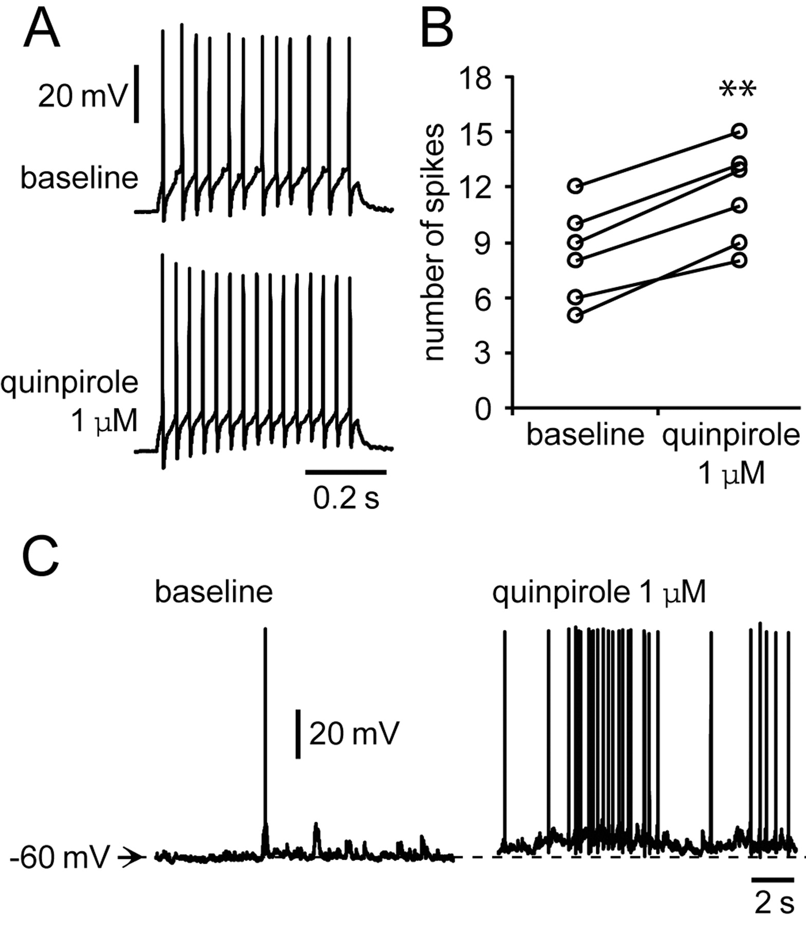 Dopamine Glutamate Interactions Controlling Prefrontal Cortical Pyramidal Cell Excitability