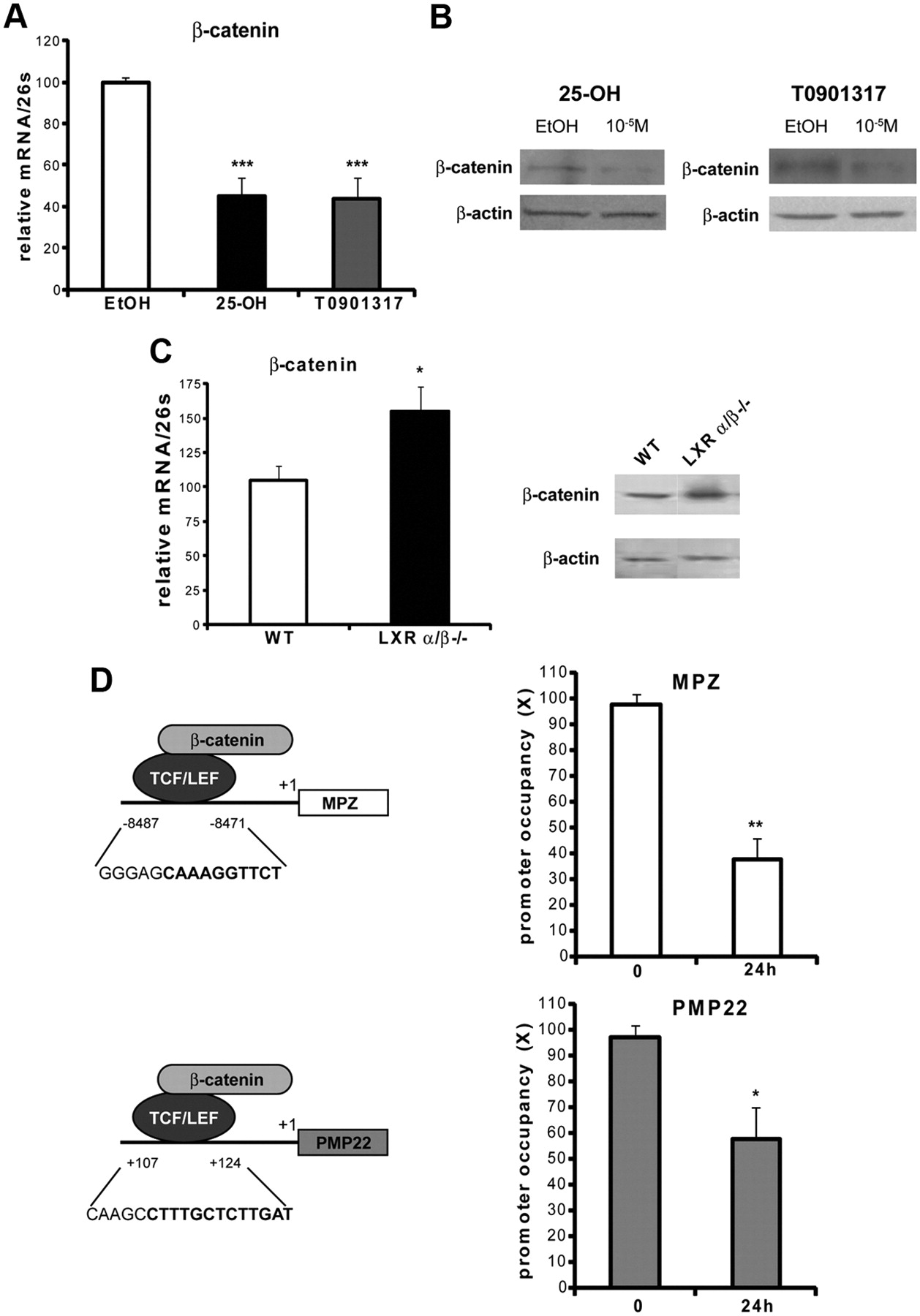 Interplay Between Lxr And Wnt Catenin Signaling In The Negative Regulation Of Peripheral