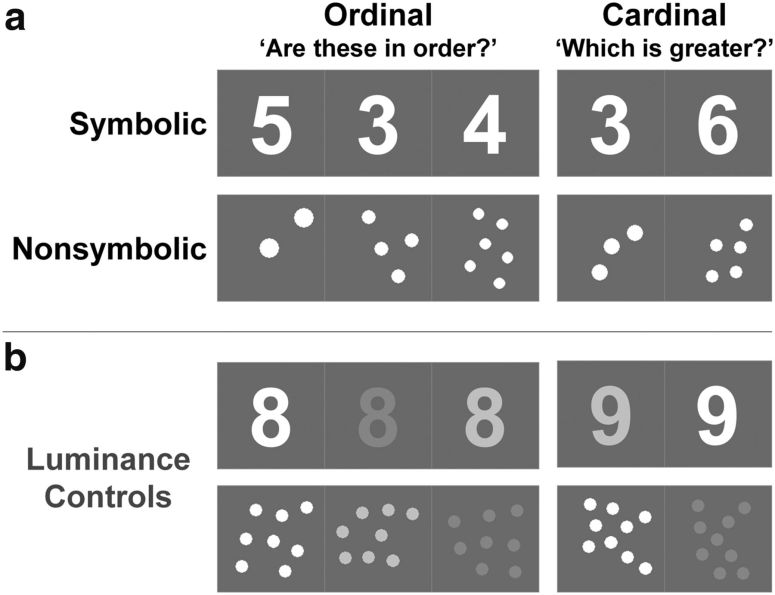 Ordinality and the Nature of Symbolic Numbers   Journal of Neuroscience