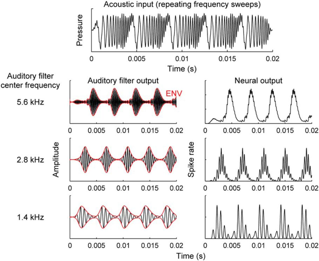 Distorted Tonotopic Coding Of Temporal Envelope And Fine Structure With Noise Induced Hearing