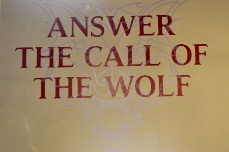 The Call of The Wolf