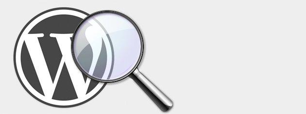 Modificar los resultados de búsqueda en WordPress