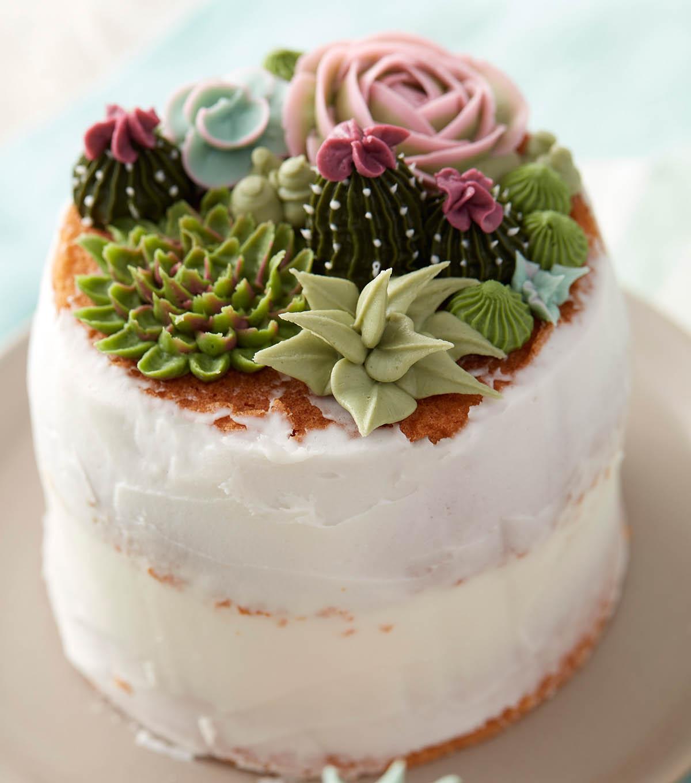 Wilton Cake Decorating Store