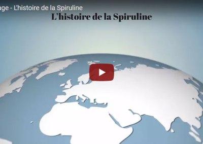 Reportage – L'histoire de la Spiruline