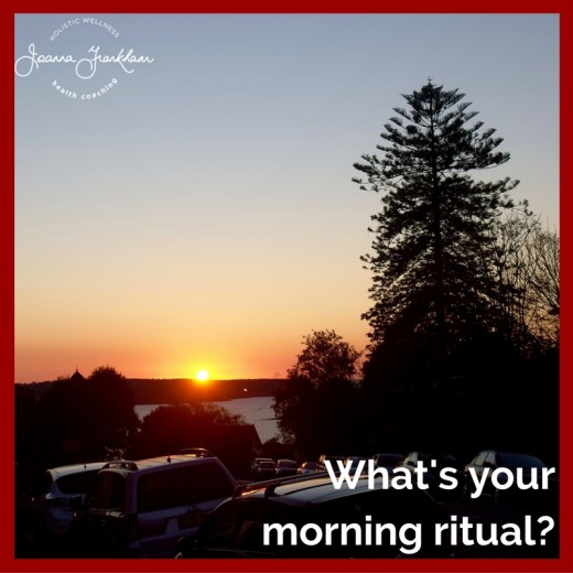 Mornings in Mosman