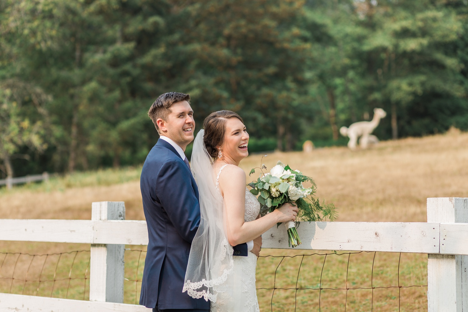 A bride and groom stand at a fence watching livestock before their wedding at Chateau Lill in Woodinville, a wedding venue near Seattle, WA. | Joanna Monger Photography | Seattle & Snohomish Photographer