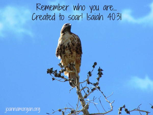 Remember Who You Are by Joanna Morgan