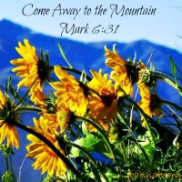 Come Away to the Mountain