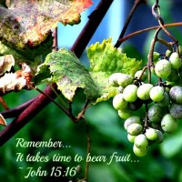 It Takes Time to Bear Fruit