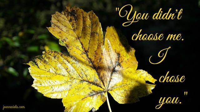 chose-you