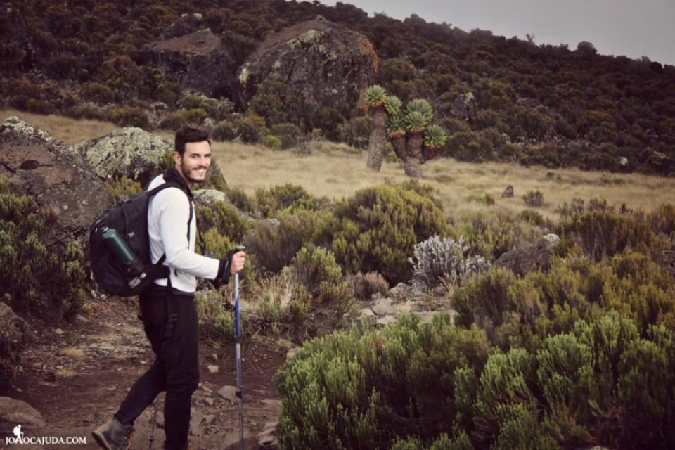 joão-cajuda-tanzaniaclimbing-kilimanjaro77- www.joaocajuda.com