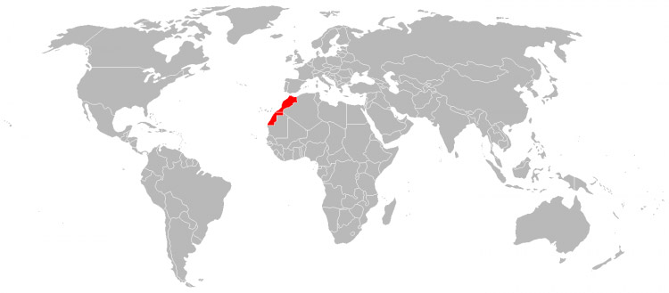 Mapa de Viagens em 2006