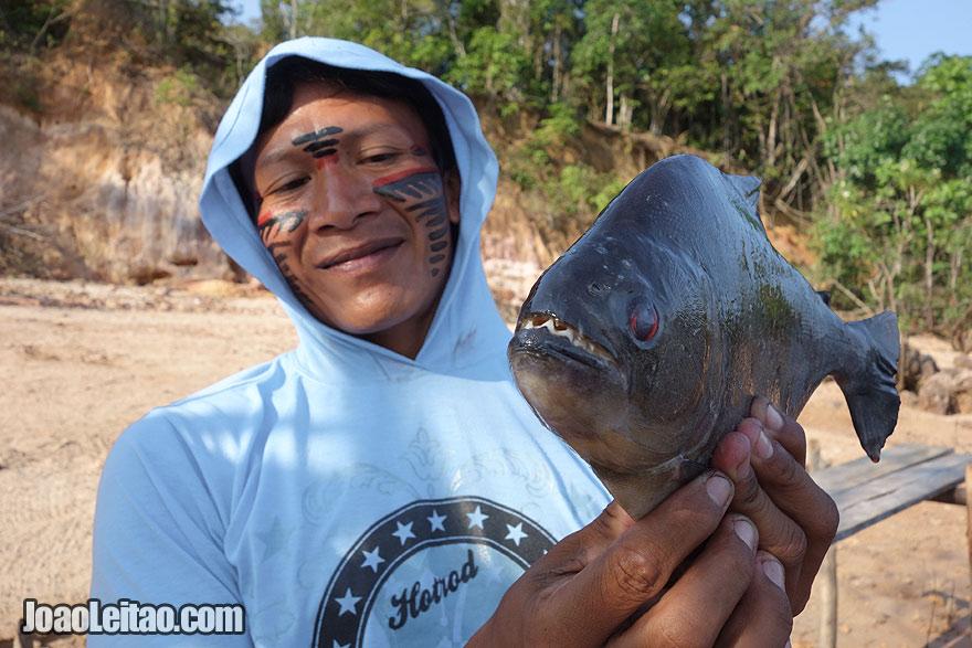 Piranha bem perigosa