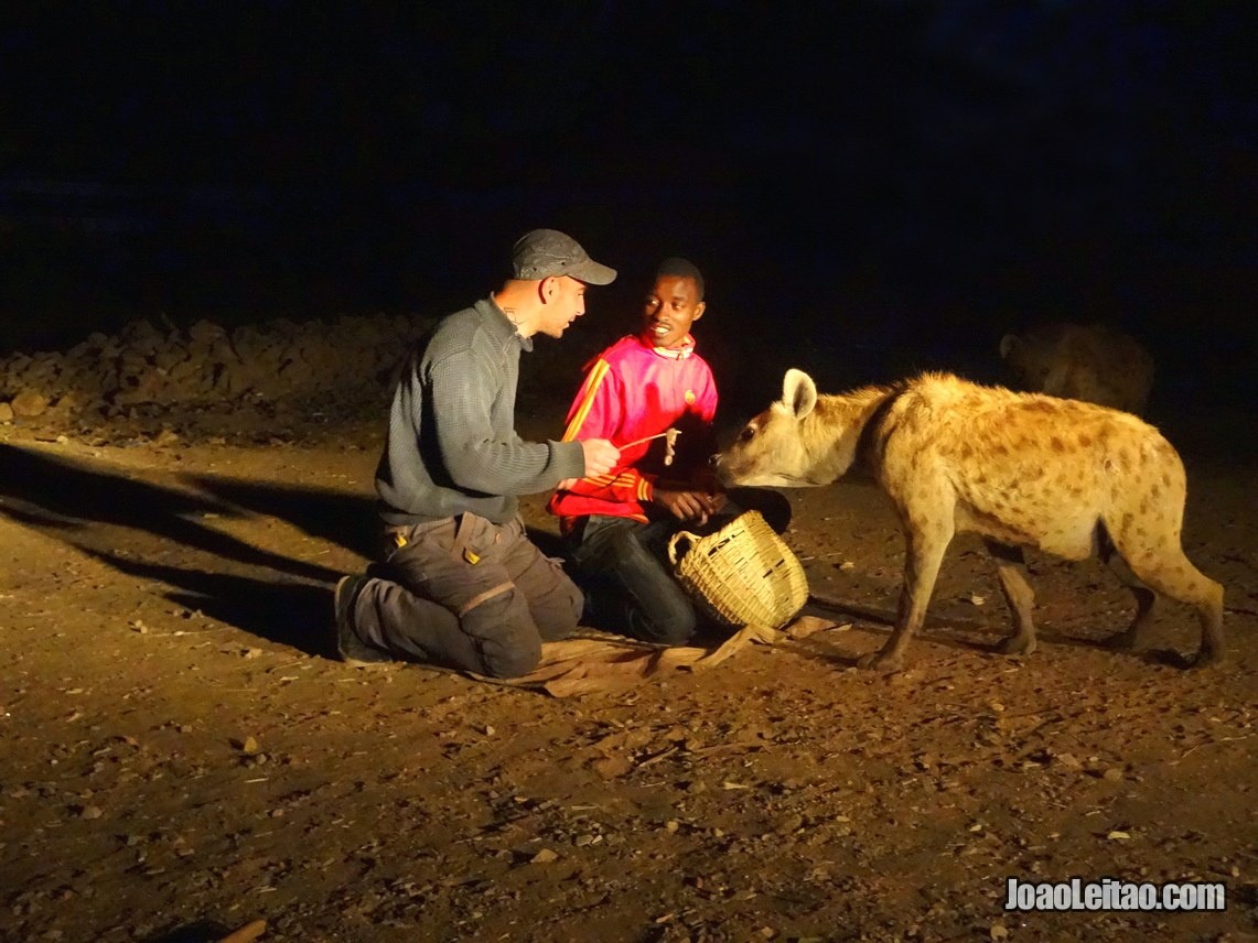 Feeding Wild hyenas in Harar, Ethiopia - Travel Blog