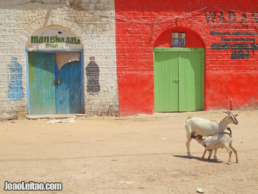 Travel to Berbera in Somaliland