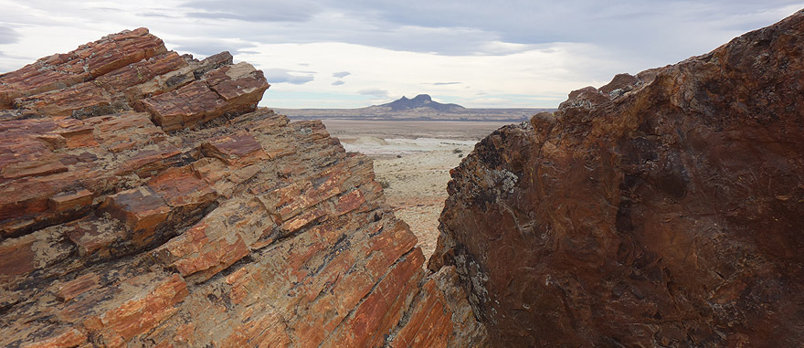 Visit Petrified Forest in Argentina