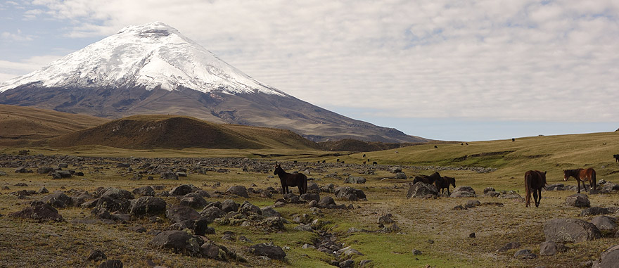 Visit Cotopaxi in Ecuador South America Travel Guide
