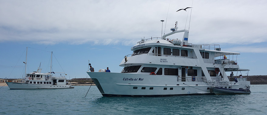 Cruzeiro Estrella del Mar