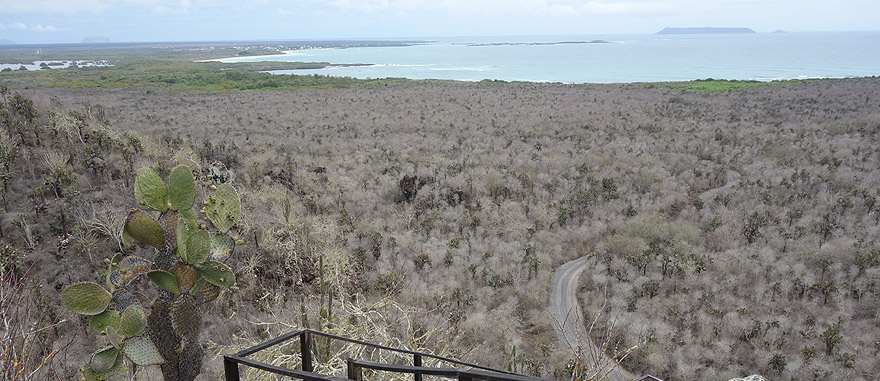 Upper view of Isabela Island in Galapagos