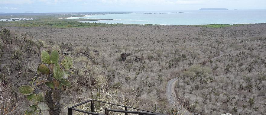 Vista aérea da Ilha Isabela nas Galápagos