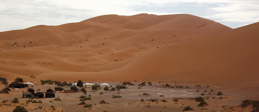 Oasis 2 hours camel ride from the hotel - Mind-blowing Sahara Desert Hotel
