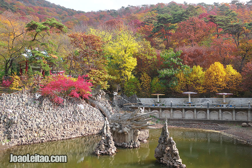 I traveled to DPRK during the beautiful Autumn season when all the trees have amazing different colors.