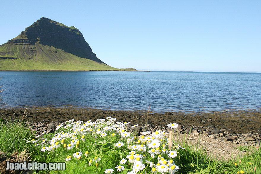 Visit Kirkjufell Mountain Grundarfjorour Western Region Iceland