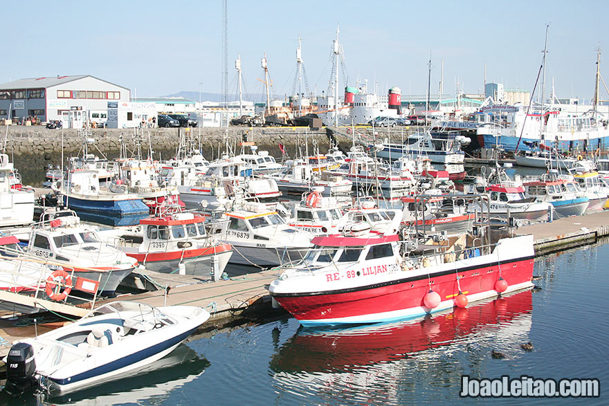Visit Reykjavik Harbour Capital Region Iceland