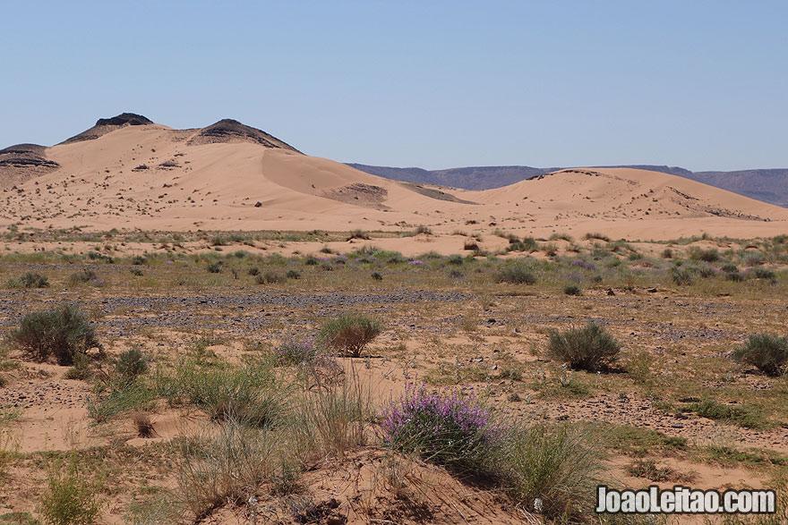Sahara Desert landscape in Morocco