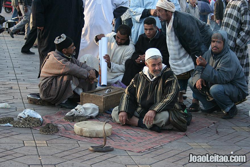 Snake charmers in Marrakesh
