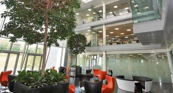 Zona de trabajadores en las oficinas de Apple de Irlanda