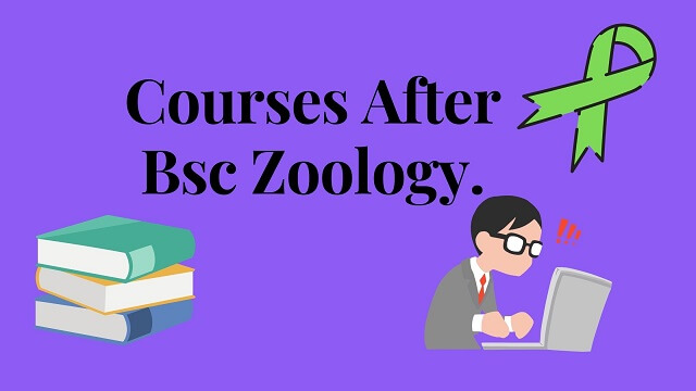 Light blue bag round along with black text words courses after bsc zoology