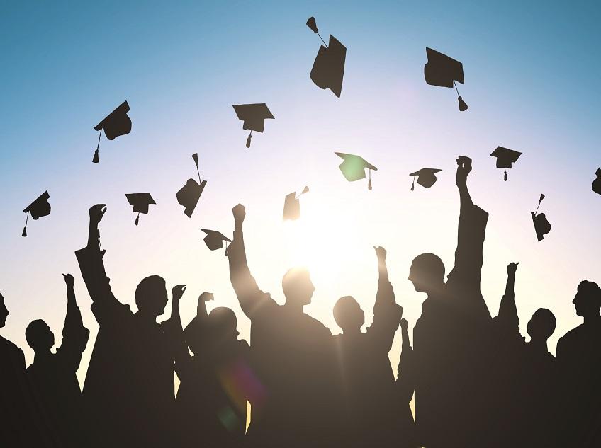 The Graduate Job Search