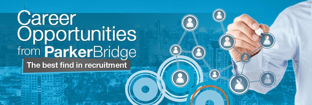 Team Leader, Technology Division – Parker Bridge Recruitment Co., Ltd.