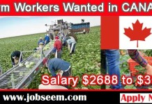 Fruit Farm Labourer Jobs in Canada 2019-2020