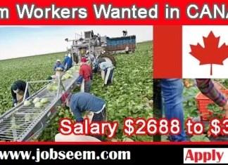 Fruit Farm Labourer Jobs in Canada 2019-2020