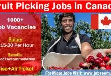 Fruit Picking Jobs in Canada Job Bank Fruit Picker 2020