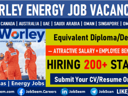 Worley Jobs and Careers Vacancy Openings Latest Employment Opportunities