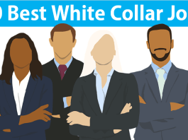 Best 20 White Collar Jobs and Profession with Workers Salary