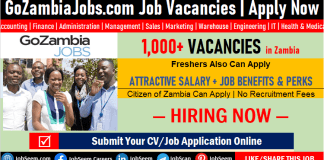 Go Zambia Jobs and Careers Recruitment, Apply for Latest Job Vacancies and Employment Opportunities at GoZambiaJobs.com