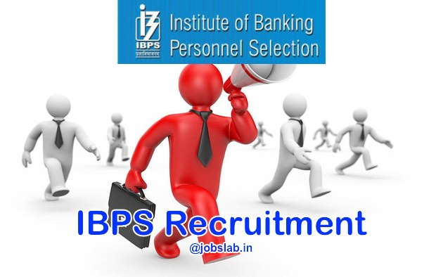 IBPS Recruitment 2016 Apply Online for IBPS CWE RRB V 2016