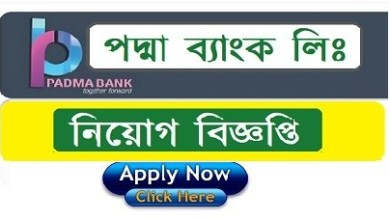 Photo of Padma Bank Limited Job Circular 2019
