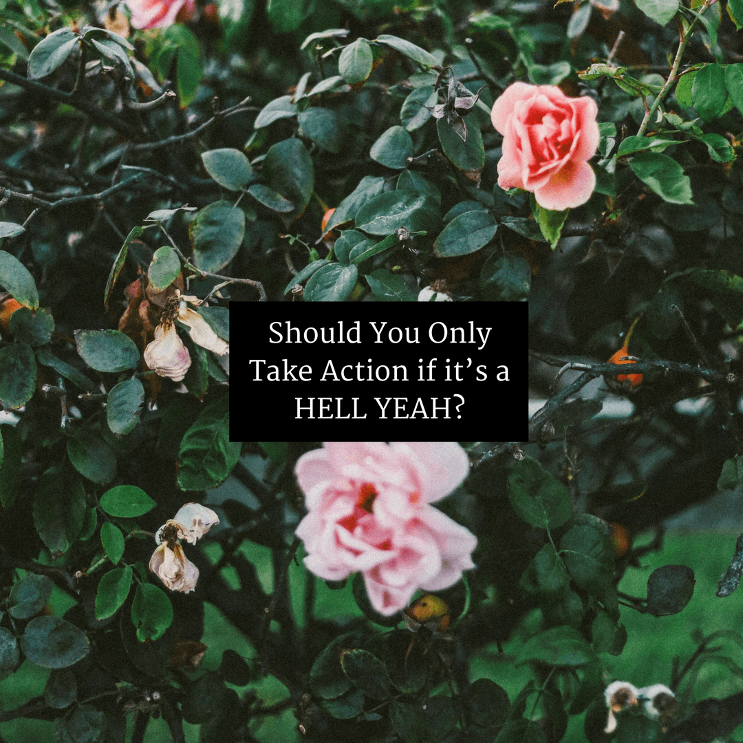 Should You Only Take Action if it's a HELL YEAH?