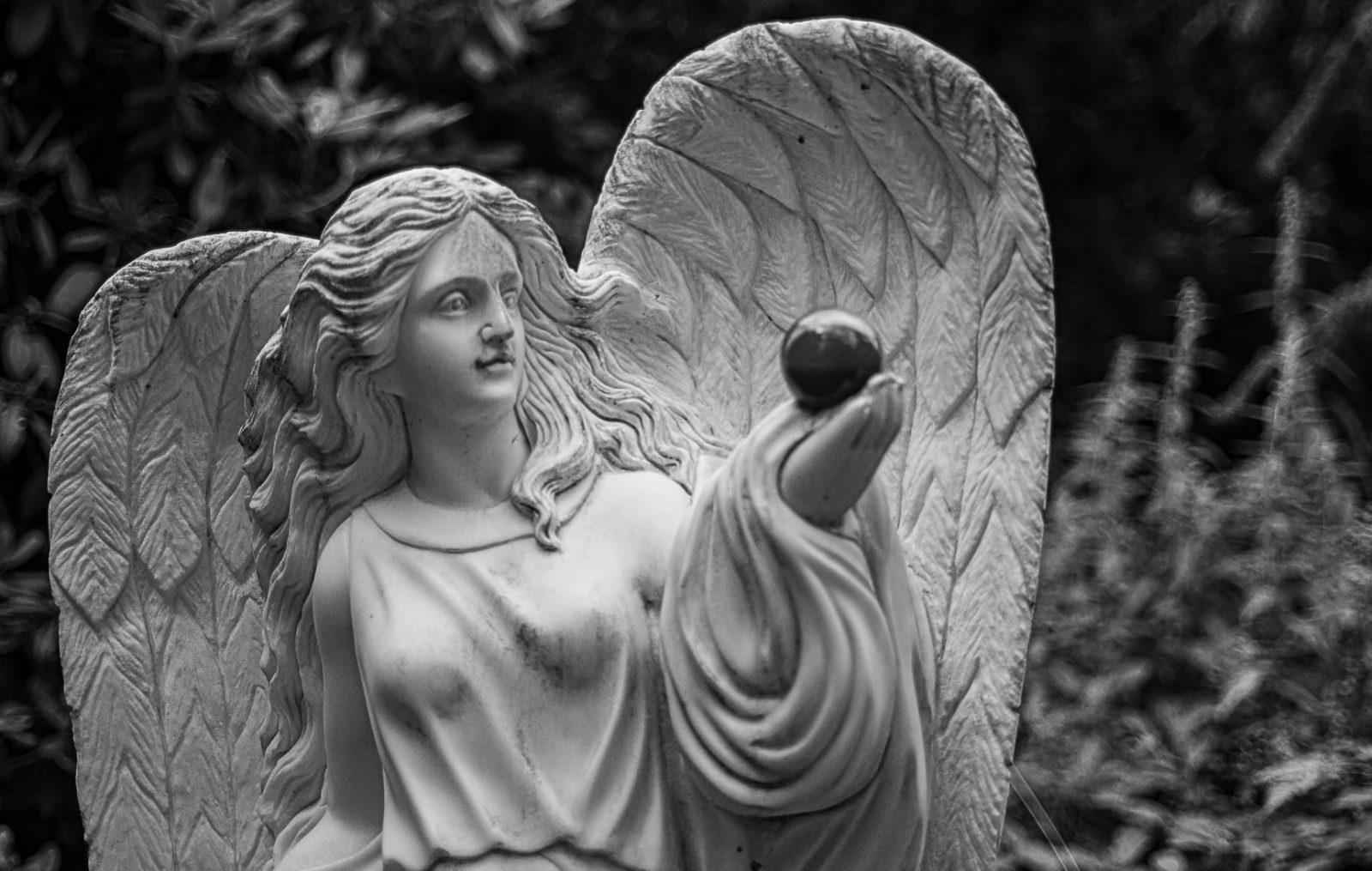20190801_Friedhof-Ohlsdorf_001-e1566073170127.jpg