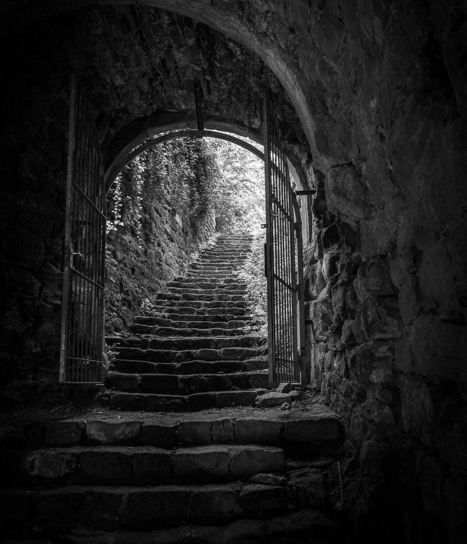 Burg Drachenfels #2