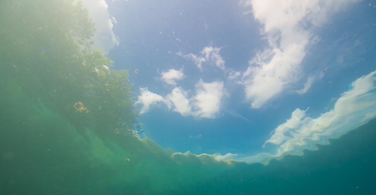 Impressionen aus dem Kreidesee