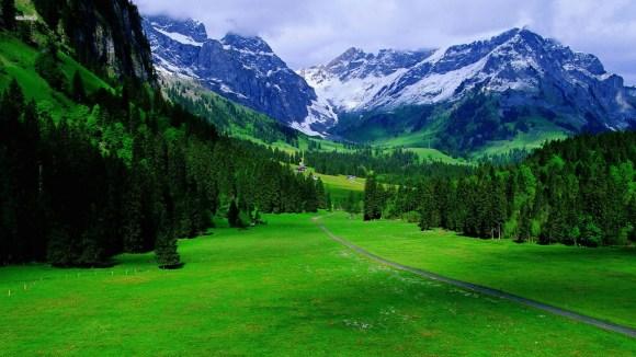 nature-scenes-04